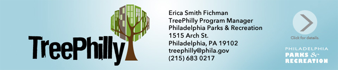 treephilly-banner